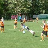 Nachwuchs, U12 und U13 gewinnen 7:0